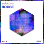 Selective: House Vol 6