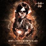 Exploration Of Sound