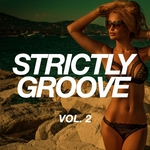Strictly Groove Vol 2