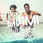 The Miami Softhouse Amigos