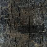 QUENUM - Solitaire (Front Cover)
