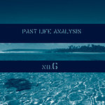 Past Life Analysis 6