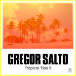 GREGOR SALTO/VARIOUS - Gregor Salto Presents Tropical Tips 5 (unmixed tracks) (Front Cover)
