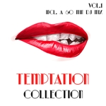 Temptation Collection Vol 1 (Selection Of House Music) (unmixed Tracks)