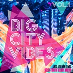 Big City Vibes Vol 1 (Selection Of Dance Music) (unmixed tracks)