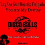 You Are My Destiny (Remixes)