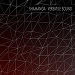 Versatile Sound EP