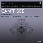 Can't See (Remixes)