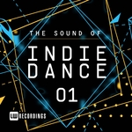 The Sound Of Indie Dance Vol 01