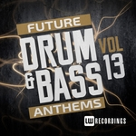 Future Drum & Bass Anthems Vol 13