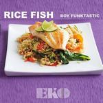 Rice Fish