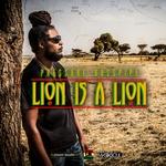 Lion Is A Lion