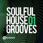 Soulful House Grooves Vol 01