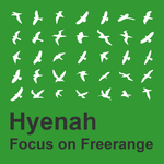 Focus On Freerange