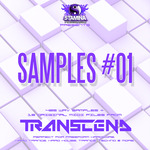 Samples #01: Transcend (Sample Pack WAV/MIDI)