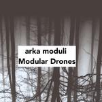Modular Drones
