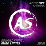 Mind Limits