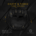 Fake Voices