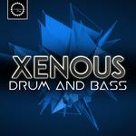 Drum N Bass (Sample Pack WAV)