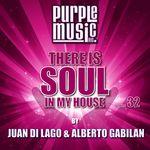 Juan Di Lago & Alberto Gabilan Presents There Is Soul In My House Vol 32