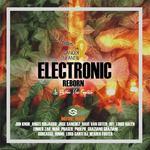 Electronic Reborn