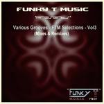 Various Grooves/FTM Selections Vol 3 (Mixes & Remixes)