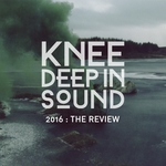 2016: The Review (unmixed tracks)
