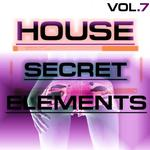 Secret House Elements Vol 7