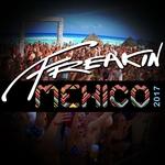 Freakin Mexico 2017 (unmixed tracks)