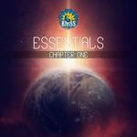 Essentials Chapter 1