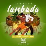 Lambada Remix (feat Elephant Man)
