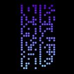 Binary/Codes