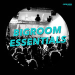 Bigroom Essentials