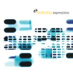 Minimal Expressions