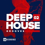 Deep House Grooves Vol 02