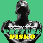 Phuture Disko Vol 15 - Electronic & Discofied
