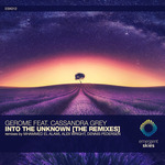 Into The Unknown (The Remixes)