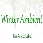 CRISTIAN PADURARU - Winter Ambient (Chillout Lounge Inspirational Music Album) (Front Cover)