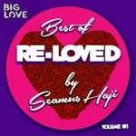 Best Of Re-Loved Vol 1