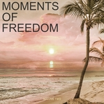 Moments Of Freedom Vol 2 (Selection Of Finest Chill Out & Ambient Music)