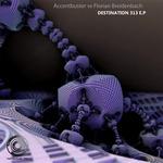 ACCENTBUSTER & FLORIAN BREIDENBACH - Destination 313 EP (Front Cover)