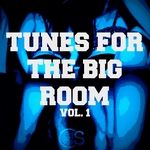 Tunes For The Big Room Vol 1