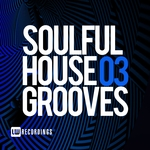 Soulful House Grooves Vol 03