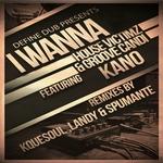 I Wanna (feat Kano)
