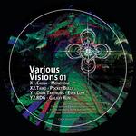 Various Visions 01