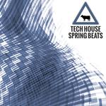 Techhouse Spring Beats