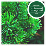 Undiscovered Underground, Vol  7