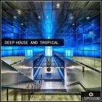 Deep House & Tropical (Sample Pack WAV)