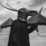 Afrikanochetos LP