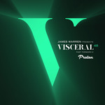 Visceral 048 - Past Forward IV